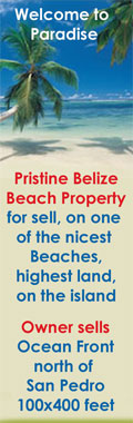 Real Estate in Belize, Dream Beach                                 Front Property for Sale