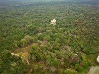 GtB Only 5% of Lamanai is not coverred from the nearby jungle