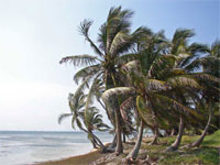 GtB Beach for Sale in Belize