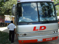 GtB Linea Dorada                                                 Bus from Guatemala on a                                                 Highway in Belize