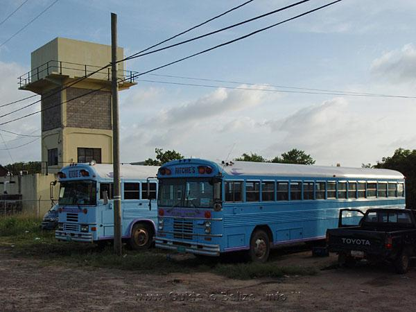 The Belize Bus Guide with Schedule, Chart and Timetable for