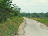 GtB The Old Northern Highway in Belize