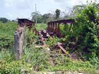 GtB Train Bridge, close to Marry Sharps in the Stann Creek Valley