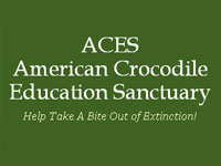 GtB Support AECS  American Crocodile Education Sancturay in Belize