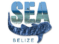 GtB Help to Protect the Reef and the Whales in Belize