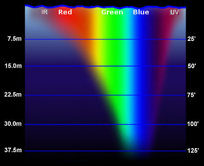 Spektrale Absorbtion und Eindringtiefe von Licht in Meerwasser